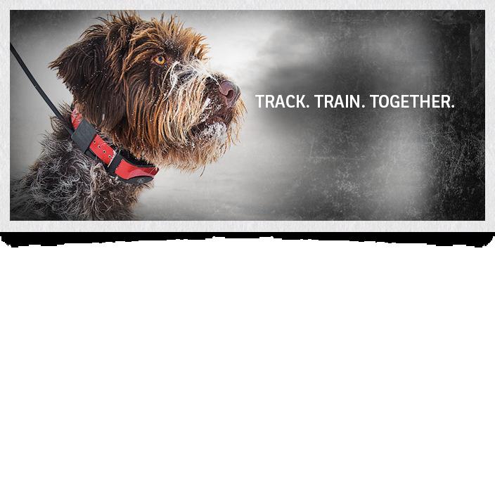 sdr-ae-sportdog-1200-meter-add-a-dog-extra-receiver-collar
